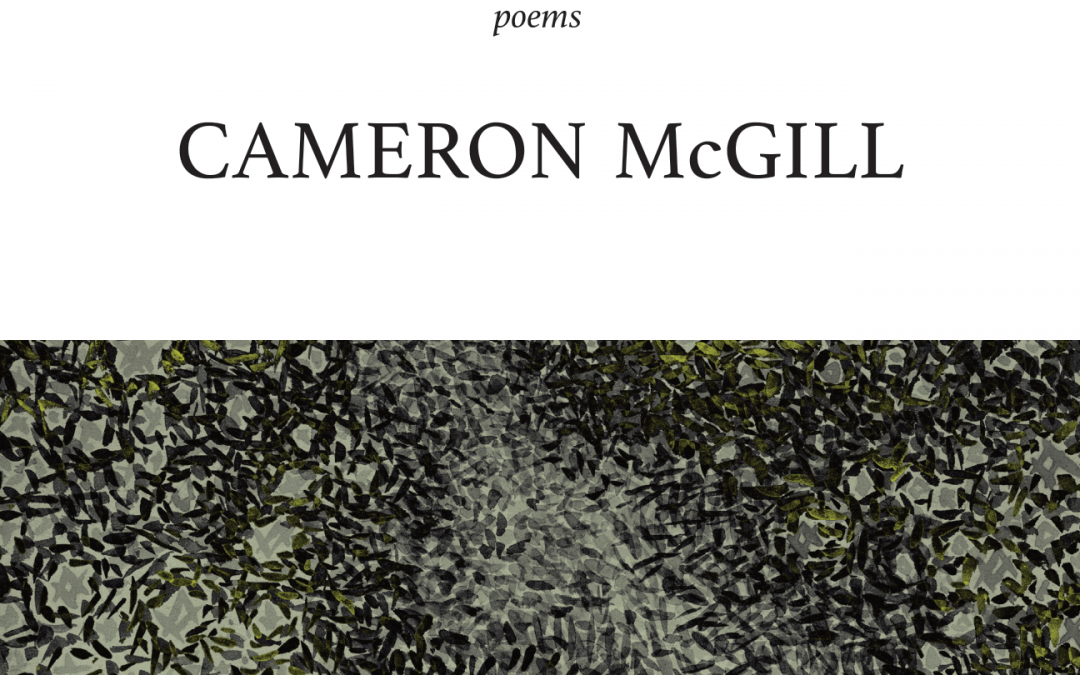Meridians – by Cameron McGill